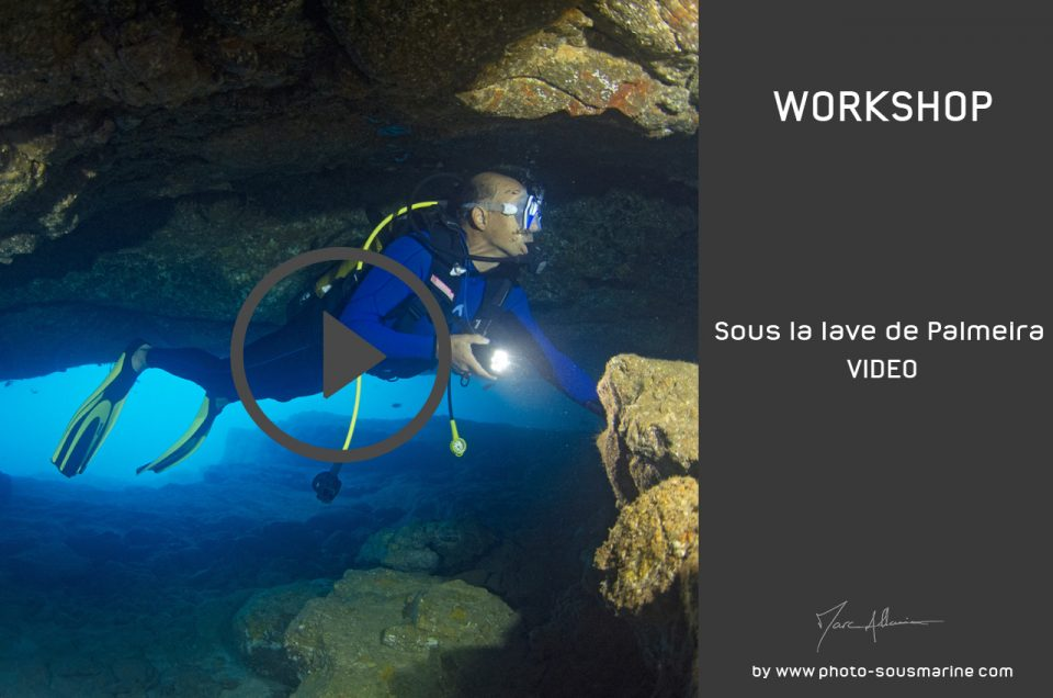 YOUTUBE • SOUS LA LAVE DE PALMEIRA - VIDEO
